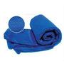 Aspiradora Manual Recargable Spas Intex 28620