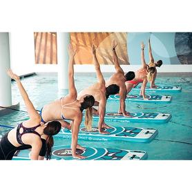 Limpiafondos Dolphin Acuarius R4