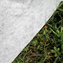 Piscina Enterrada StarPool 600x320x120 PEOV6027